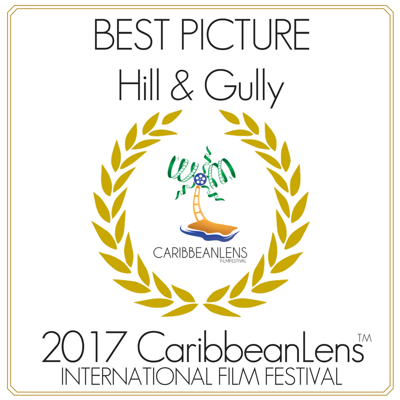 Best Picture: Hill & Gully